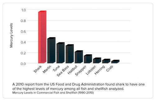 Die Methylquecksilberbelastung war von allen getesteten Tieren in den Haien am höchsten. Grafik: FAO