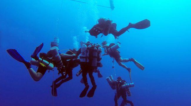 Ahmed Gabr und Tauchteam unter Wasser, Ägypten