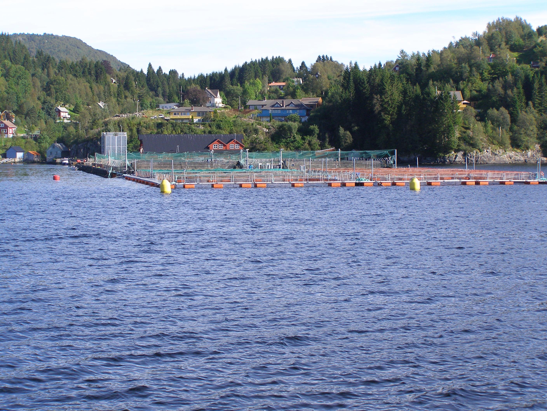 the aquaculture of british columbia Related organizations canadian aquaculture associations alberta aquaculture association  british columbia fisheries and aquaculture ministère de l'agriculture.