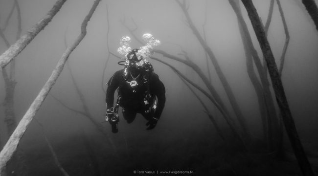 Diving Hemmor germany Underwater Image-1