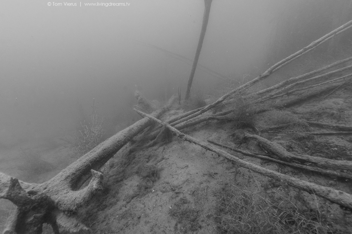 Hemmoor Lake Diving Underwater Images, Germany-19