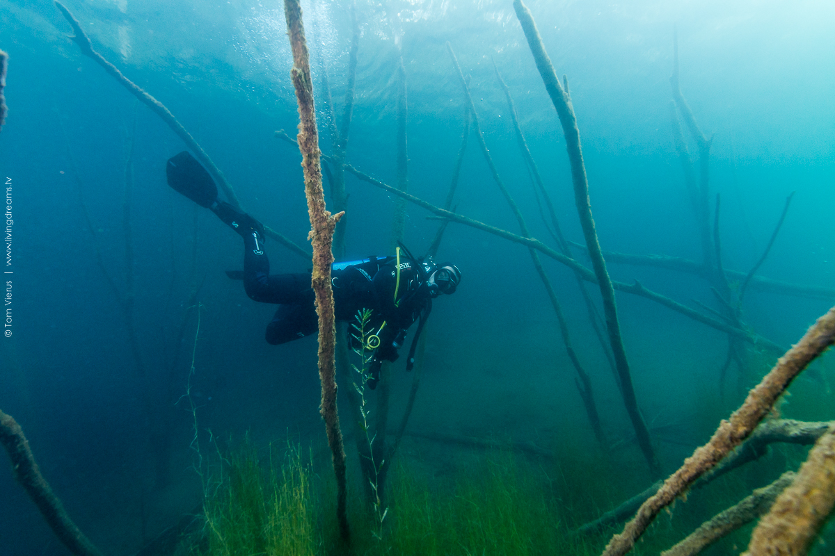 Hemmoor Lake Diving Underwater Images, Germany