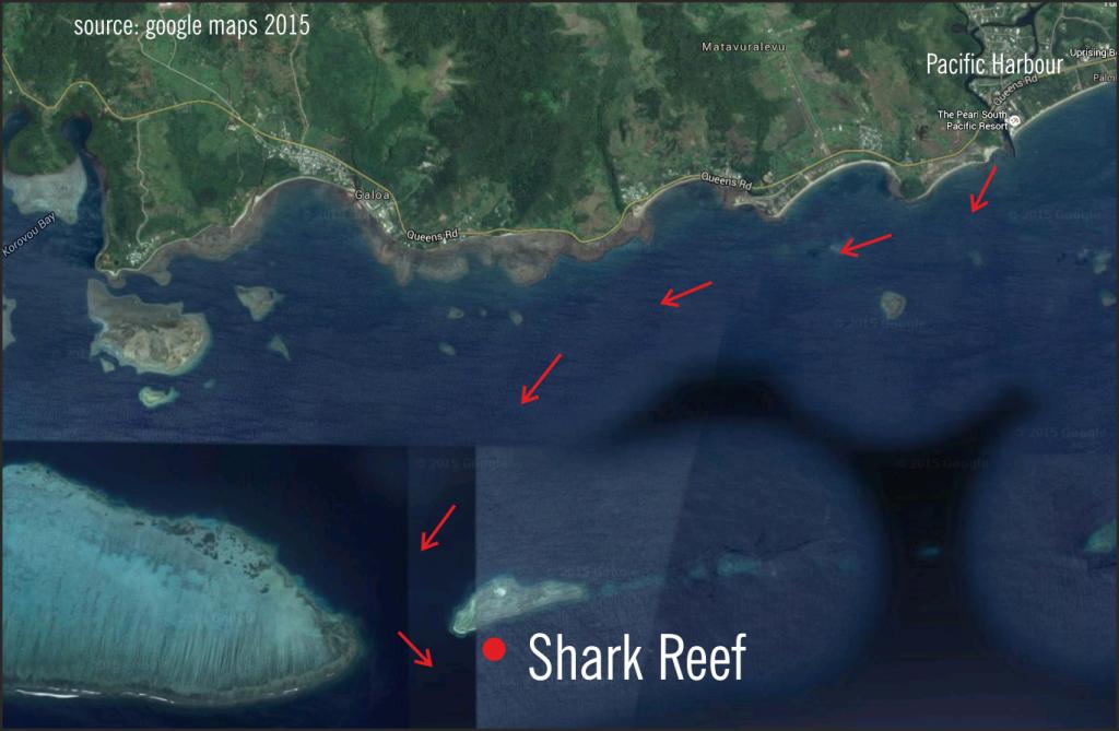 Shark Reef, Fiji, Beqa Channel