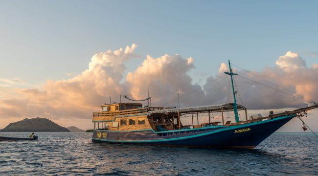 Liveaboard, Diving, National Park, Flores, Labuan Bajo, Indonesia