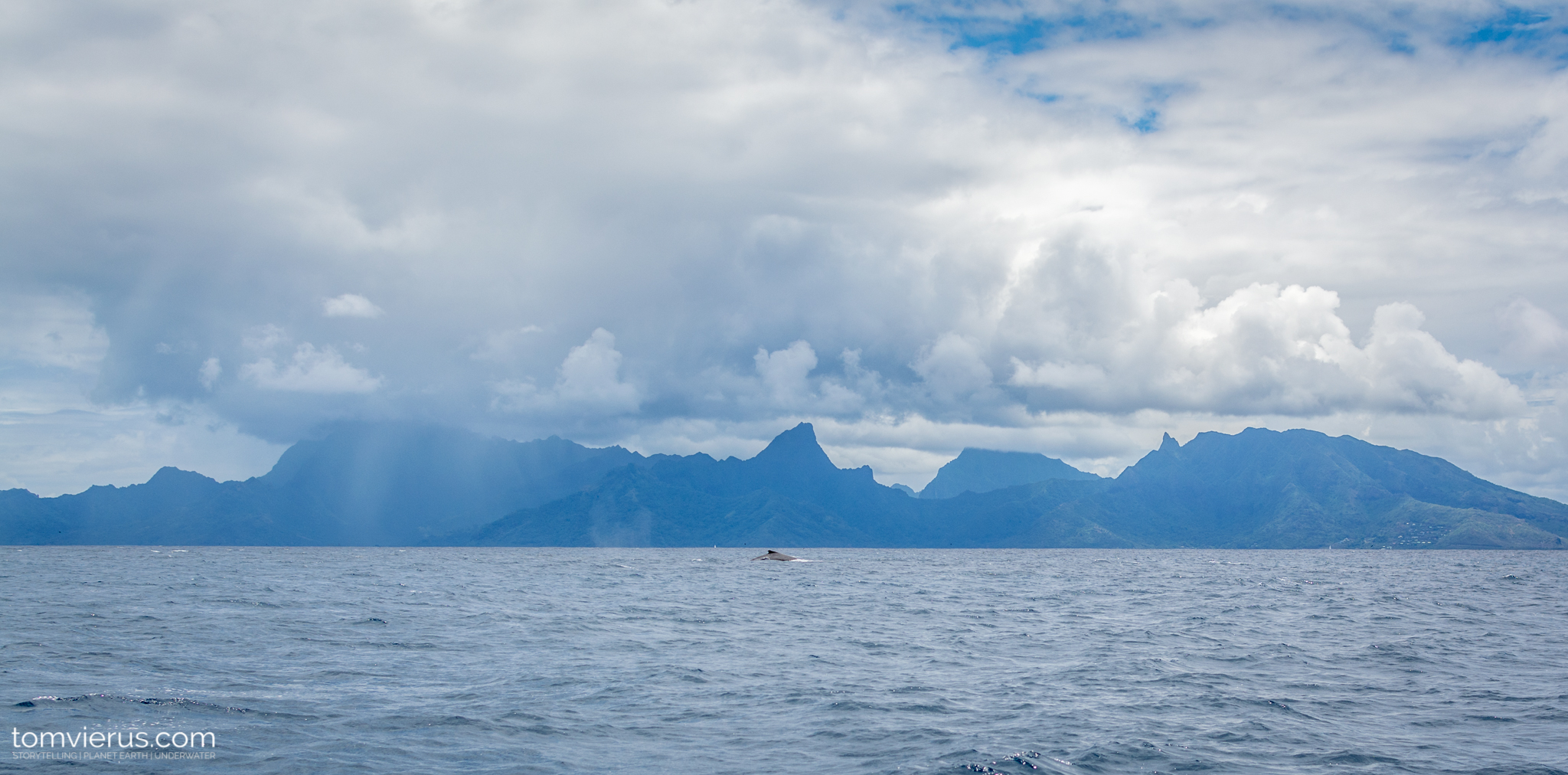 Moorea, Pacific, ocean, French Polynesia