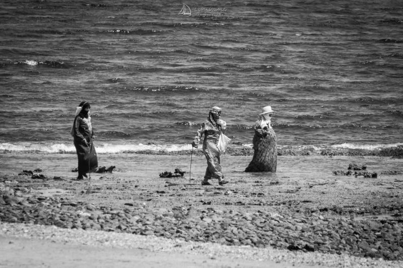 Beduin ladies grazing the reef flat