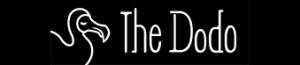 www.thedodo.com