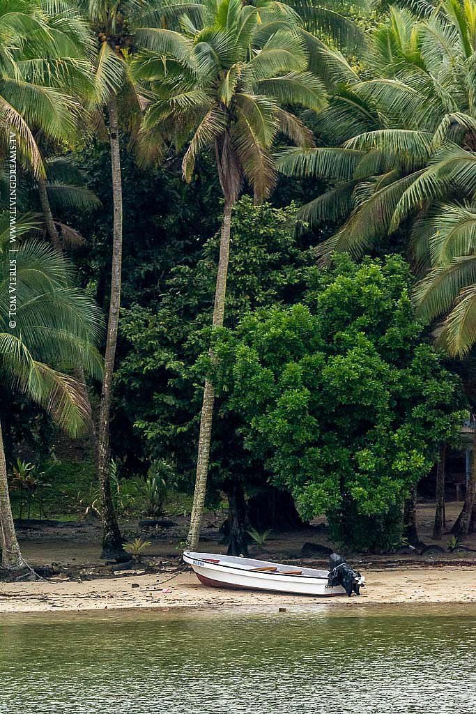 Palms and Boats on Fiji