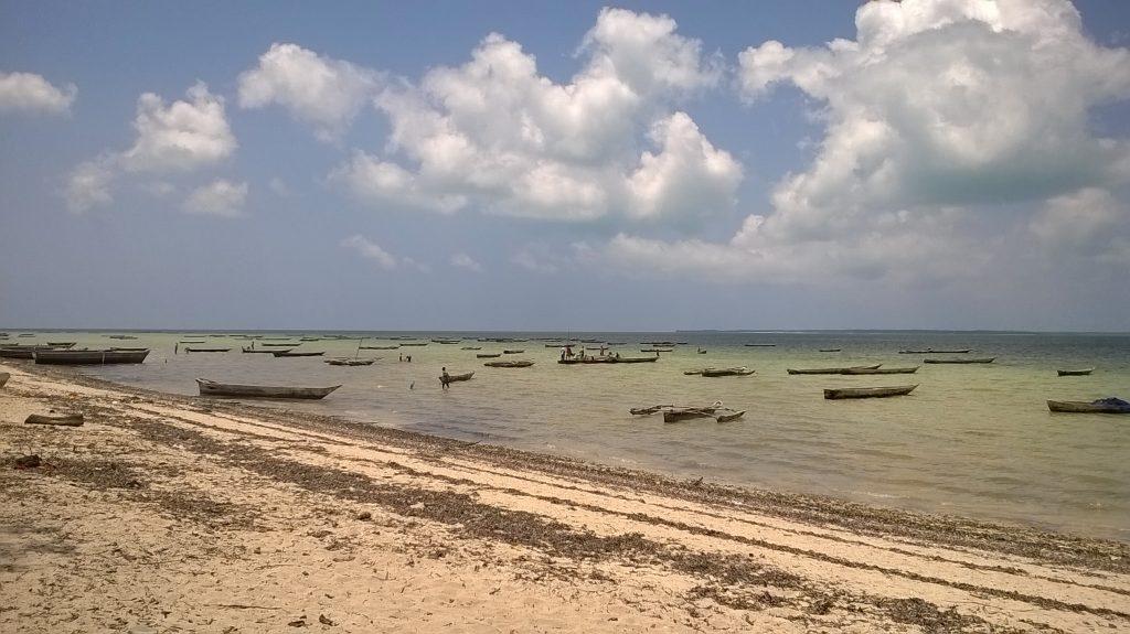 ISATEC Master Thesis Zanzibar