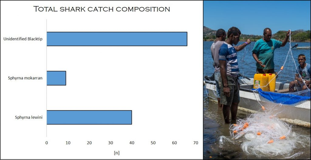 Shark Species Composition, Fiji, Fieldwork, ISATEC