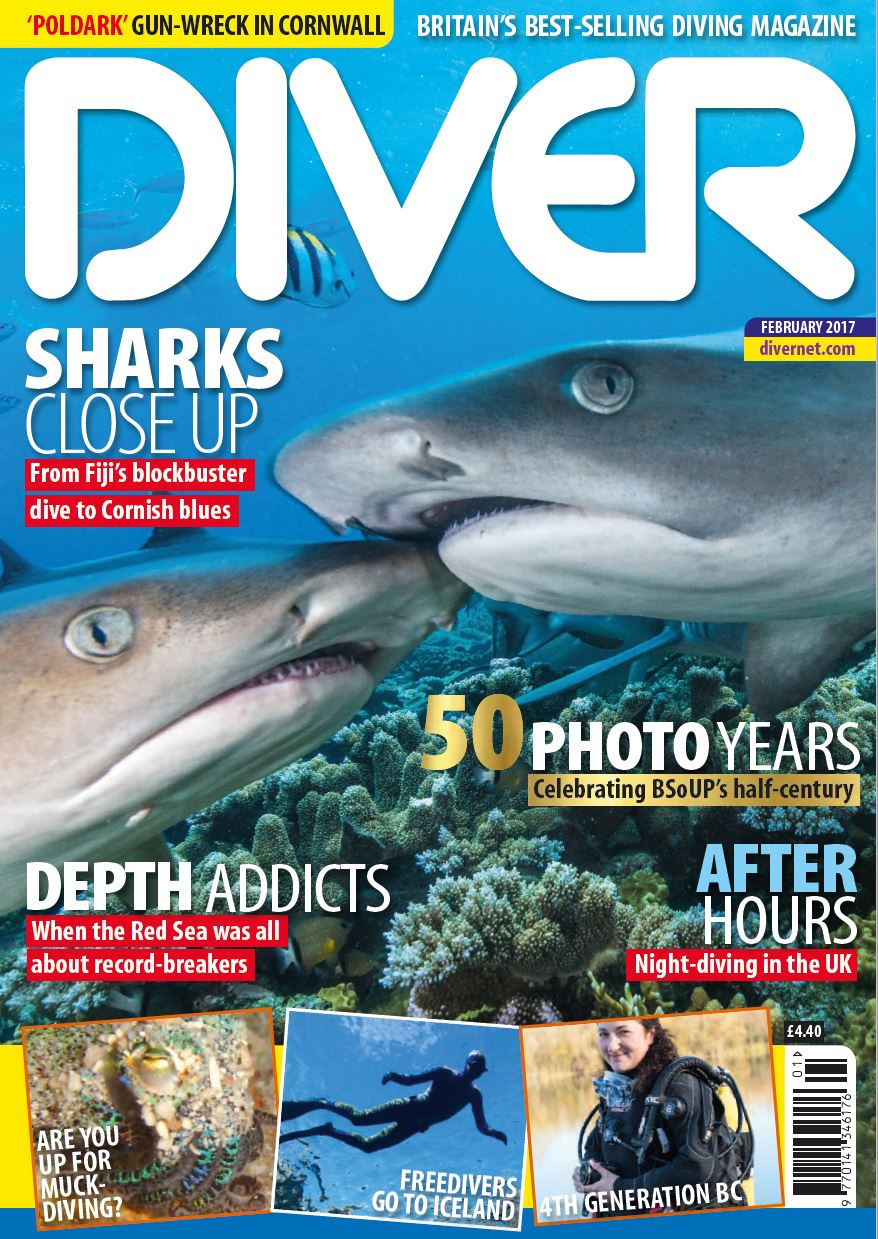 DIVER, sharks, magazine, Fiji, Diving